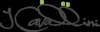 logo-cavallini-grande.png